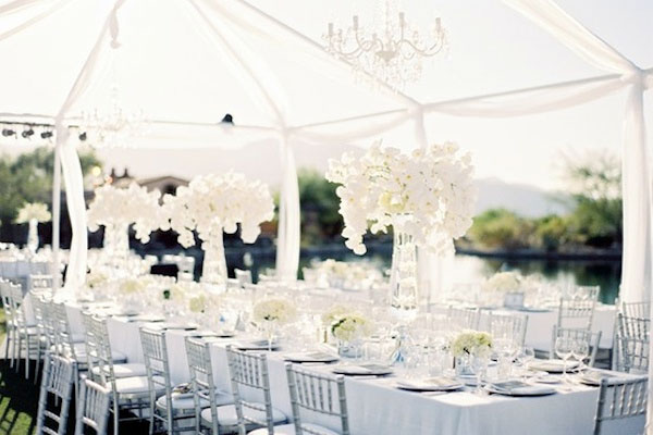 White Wedding Table, Tent and Canopy