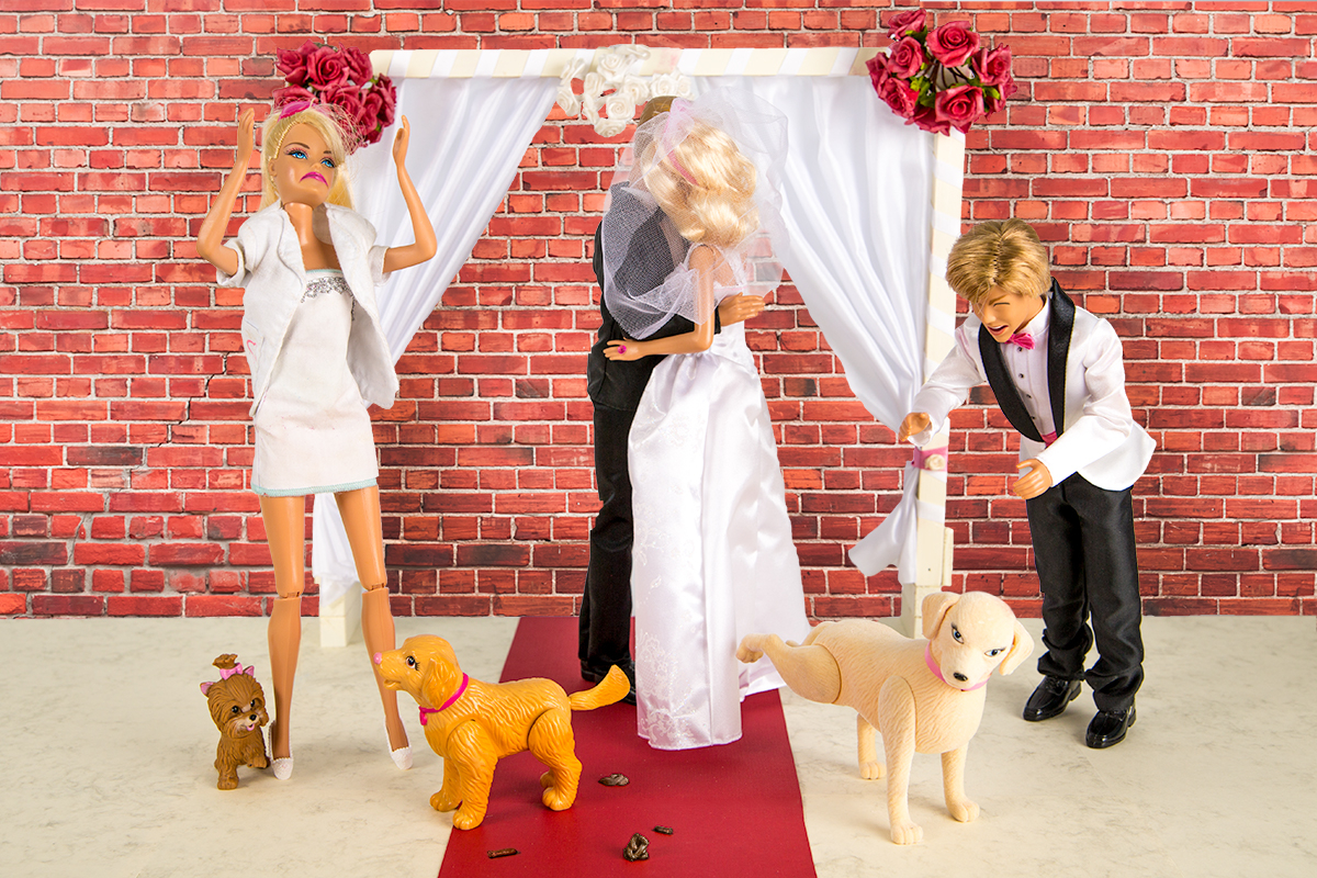 Dog mess wedding